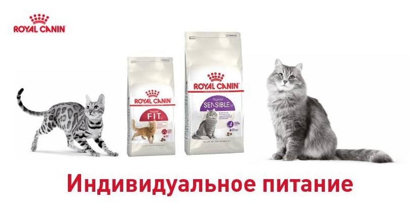 Кому подходит Royal Canin Sensible, его преимущества. Почему его назначают ветеринары? Состав корма и другие особенности. Варианты для кошек и собак.